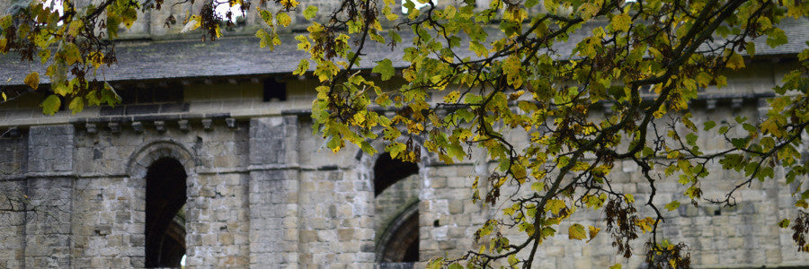 Kirkstall Abbey in November