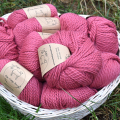 Whitfell Chunky 100% baby alpaca in Echinacea