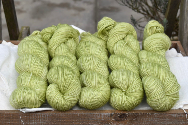 Hayton 4ply in Fresh Leaves (Dyelot 020320)
