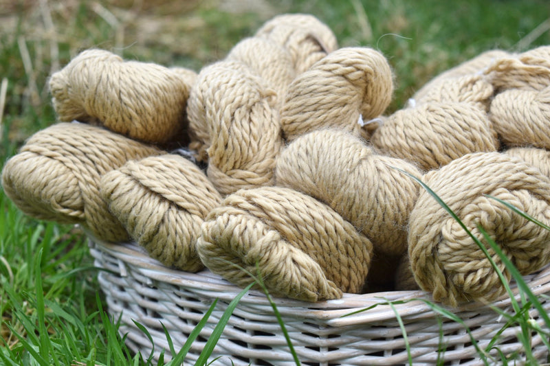 Whitfell Chunky 100% baby alpaca in Sand (500g pack)
