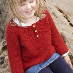 Honey Bee by Dani Sunshine knitted child's jumper kit