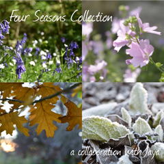 Four Seasons Collection by Jaya: Winter aka Snowy Evening