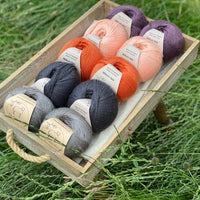 10 balls of yarn are sat in a wooden tray surrounded by grass. There are two balls of each colour. The colours from bottom left to top right are Steel, Charcoal, Crocosmia, Tea Rose and Black Tulip. The yarns create a palette of greys with orange, peach and dusky purple.