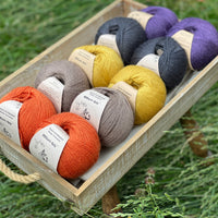 10 balls of yarn are sat in a wooden tray surrounded by grass. There are two balls of each colour. The colours from bottom left to top right are Crocosmia, Compost, Harvest Gold, Charcoal and Damson. The yarns create a palette of orange, brown, mustard yellow, dark grey and purple.