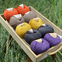 10 balls of yarn are sat in a wooden tray surrounded by grass. There are two balls of each colour. The colours from top left to bottom right are Crocosmia, Compost, Harvest Gold, Charcoal and Damson. The yarns create a palette of orange, brown, mustard yellow, dark grey and purple.