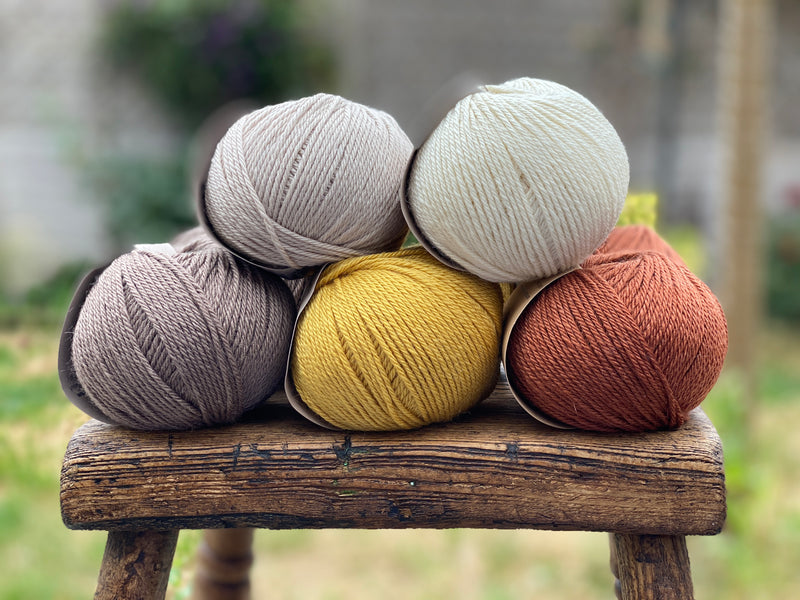 10 balls of yarn in five colours, a palette of browns
