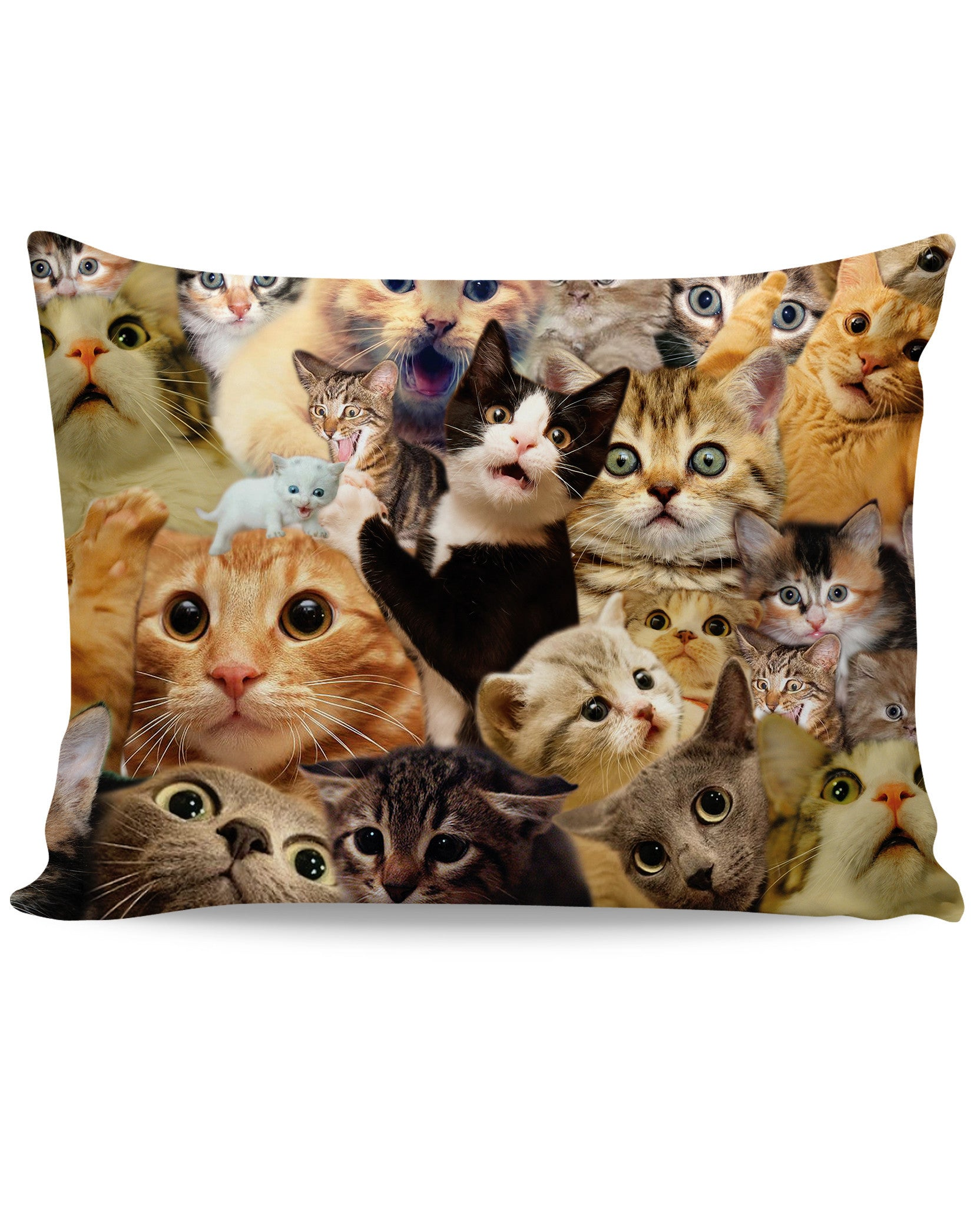 Surprised Cats Pillow Case - Love Kitty Cat