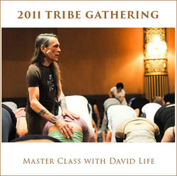 Tribe 2011 Master Class with David Life
