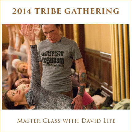 Tribe 2014 Master Class with David Life