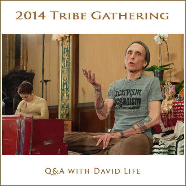Tribe 2014 Q&A with David Life