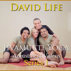 David Life's Adjustment Videos: Series 1