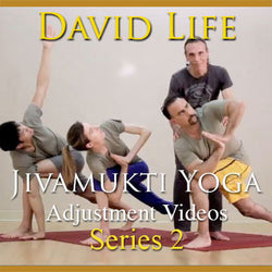 David Life's Adjustment Videos: Series 2