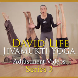 David Life's Adjustment Videos: Series 3
