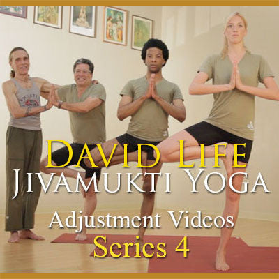 David Life's Adjustment Videos: Series 4