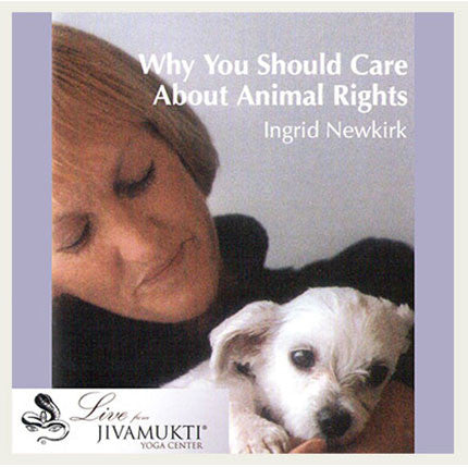Jivamukti NYC Classic: Ingrid Newkirk - Why We Should Care About Animal Rights