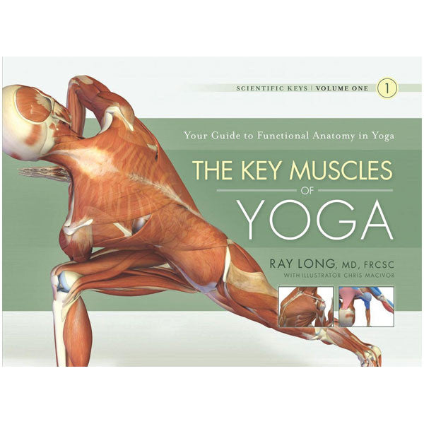 The Key Muscles of Yoga: Scientific Keys, Volume I