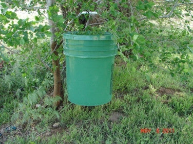 WMT Bucket Field Waterer - 3 drinkers