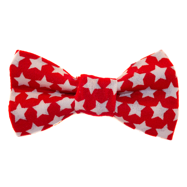 Starry Eyed Dog Bow Tie