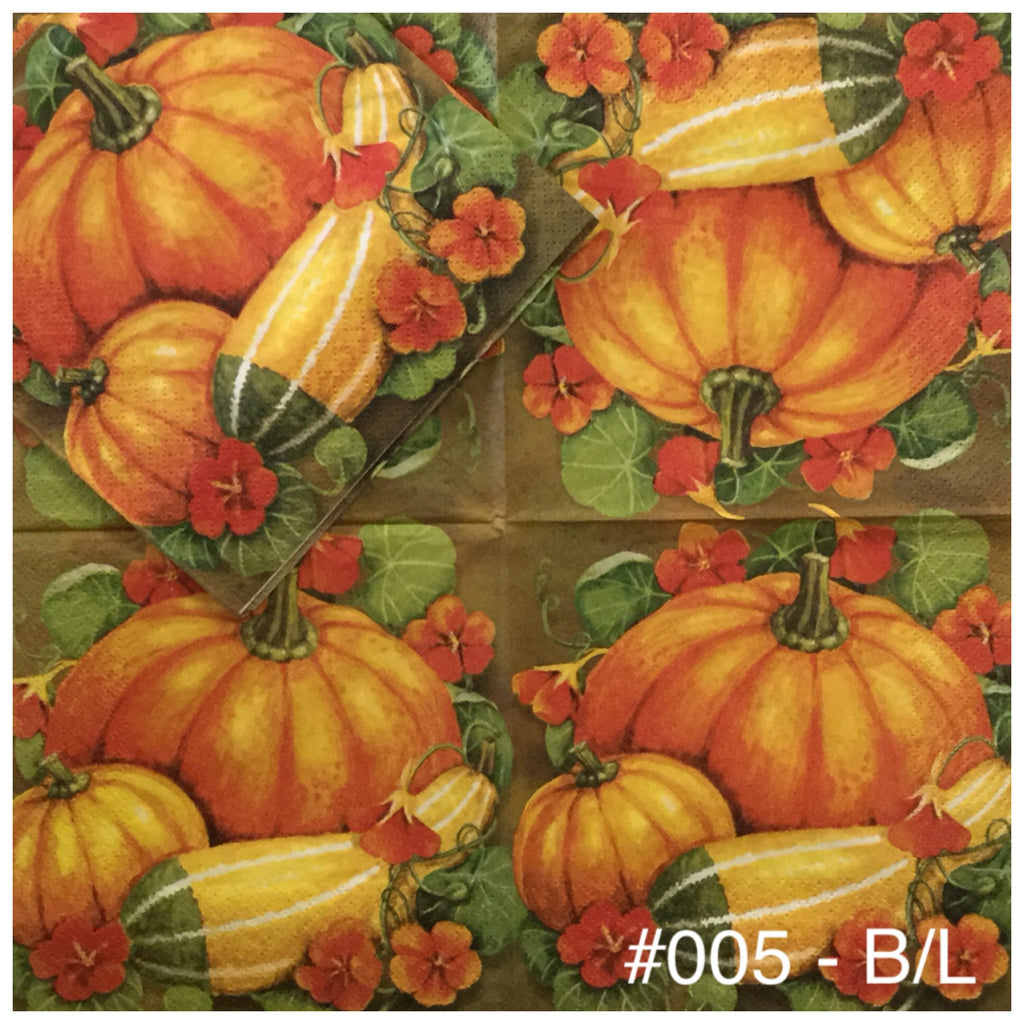 AT-005 Pumpkin Gourds #2 Napkin for Decoupage