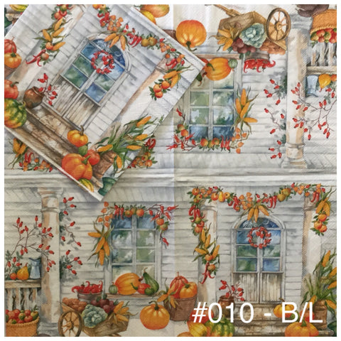 AT-010 Fall Front Door Napkin for Decoupage