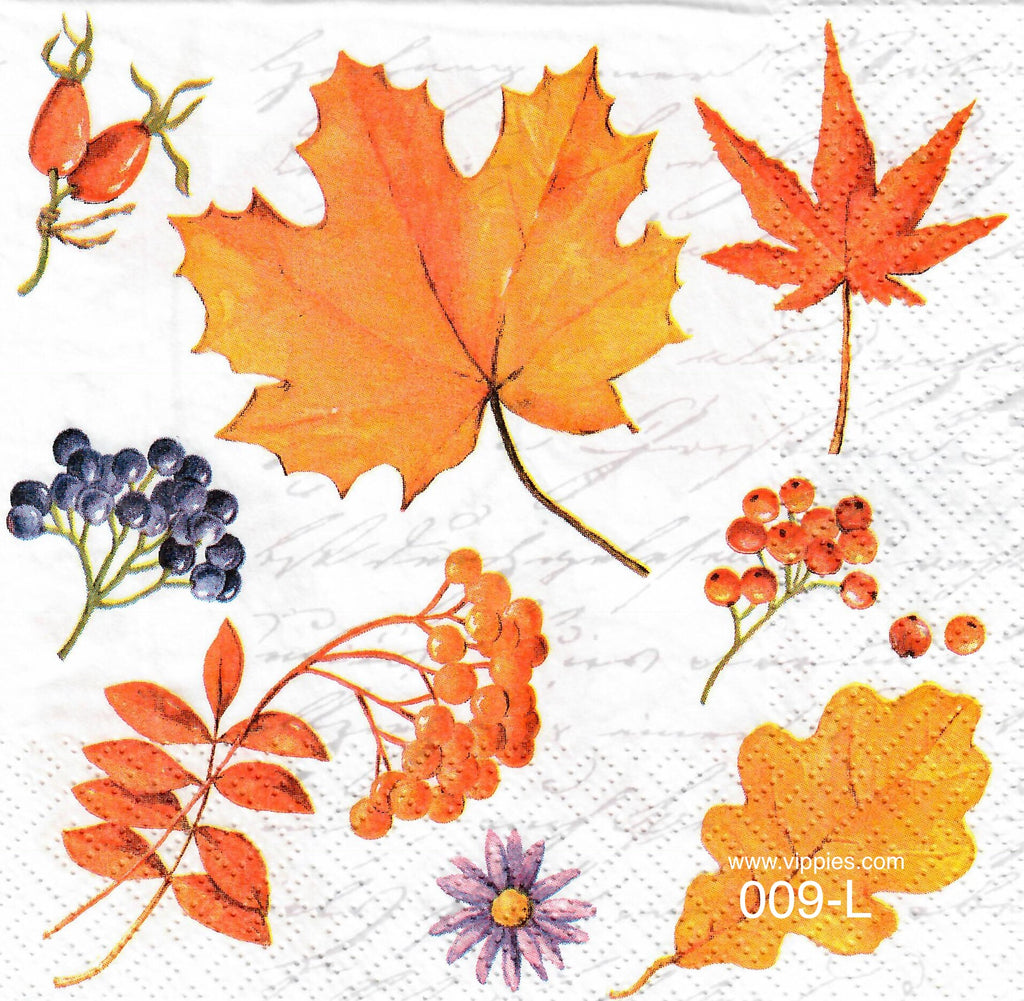 AT,009 Leaves and Berries Napkin for Decoupage
