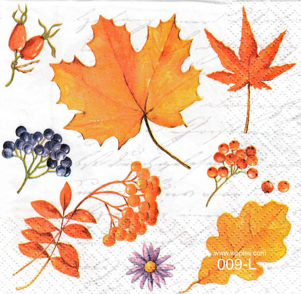 AT-009 Leaves and Berries Napkin for Decoupage