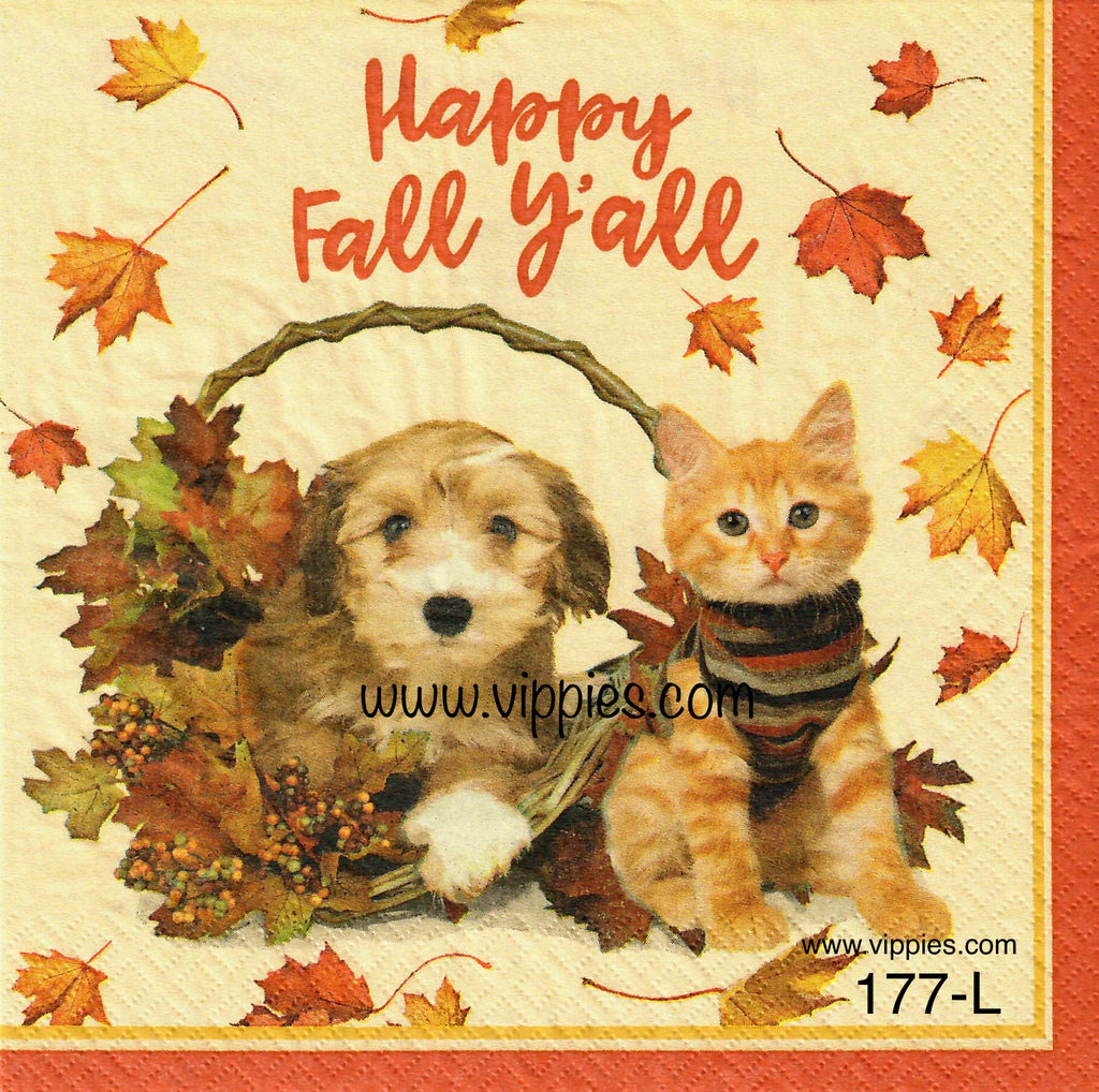 AT-177 Fall Y'All Napkin for Decoupage