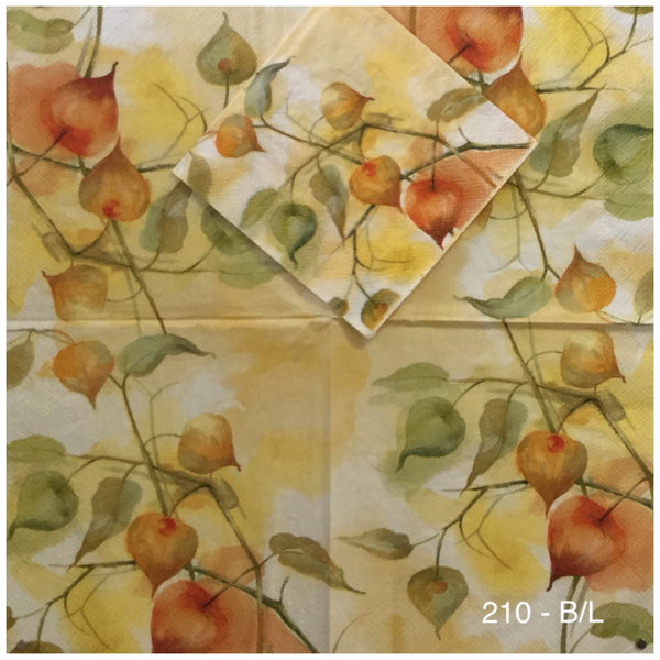 AT-210 Vines and Figs Napkin for Decoupage
