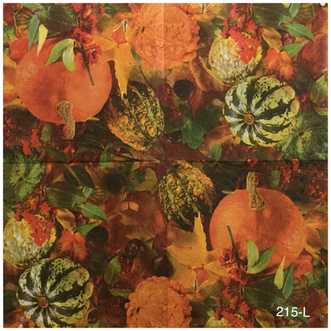AT-215 Pumpkin Gourds Group Napkin for Decoupage