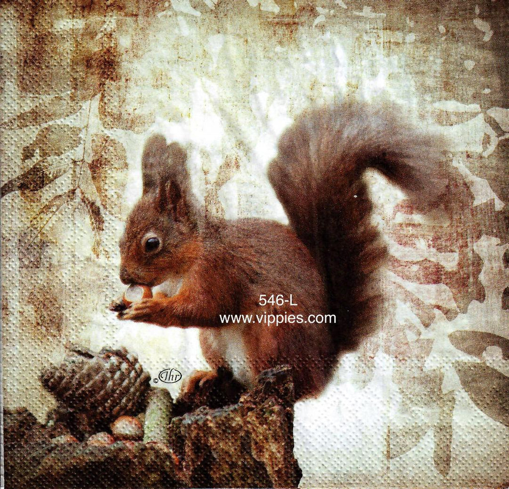 AT-546 Squirrel Napkin for Decoupage