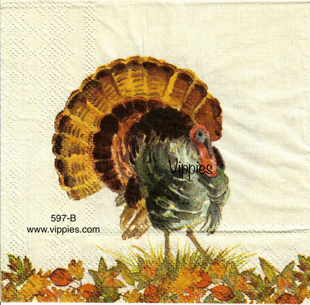AT-597 Watercolor Turkey Napkin for Decoupage