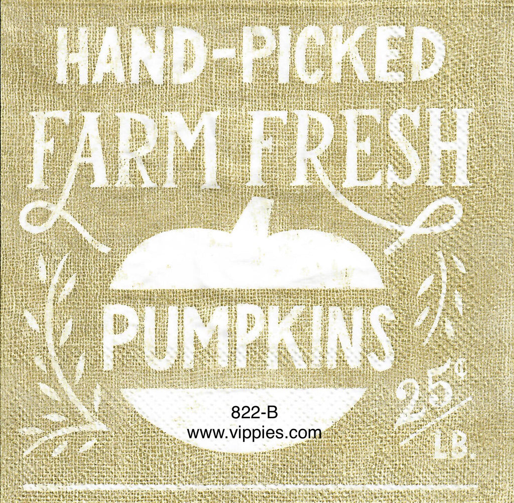 AT-822 Handpicked Pumpkins Napkin for Decoupage