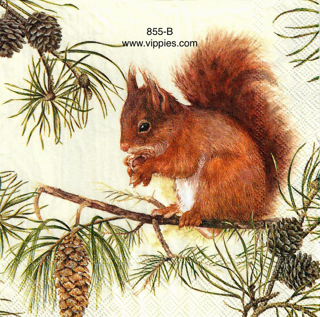 AT-855 Squirrel Pine Tree Napkin for Decoupage