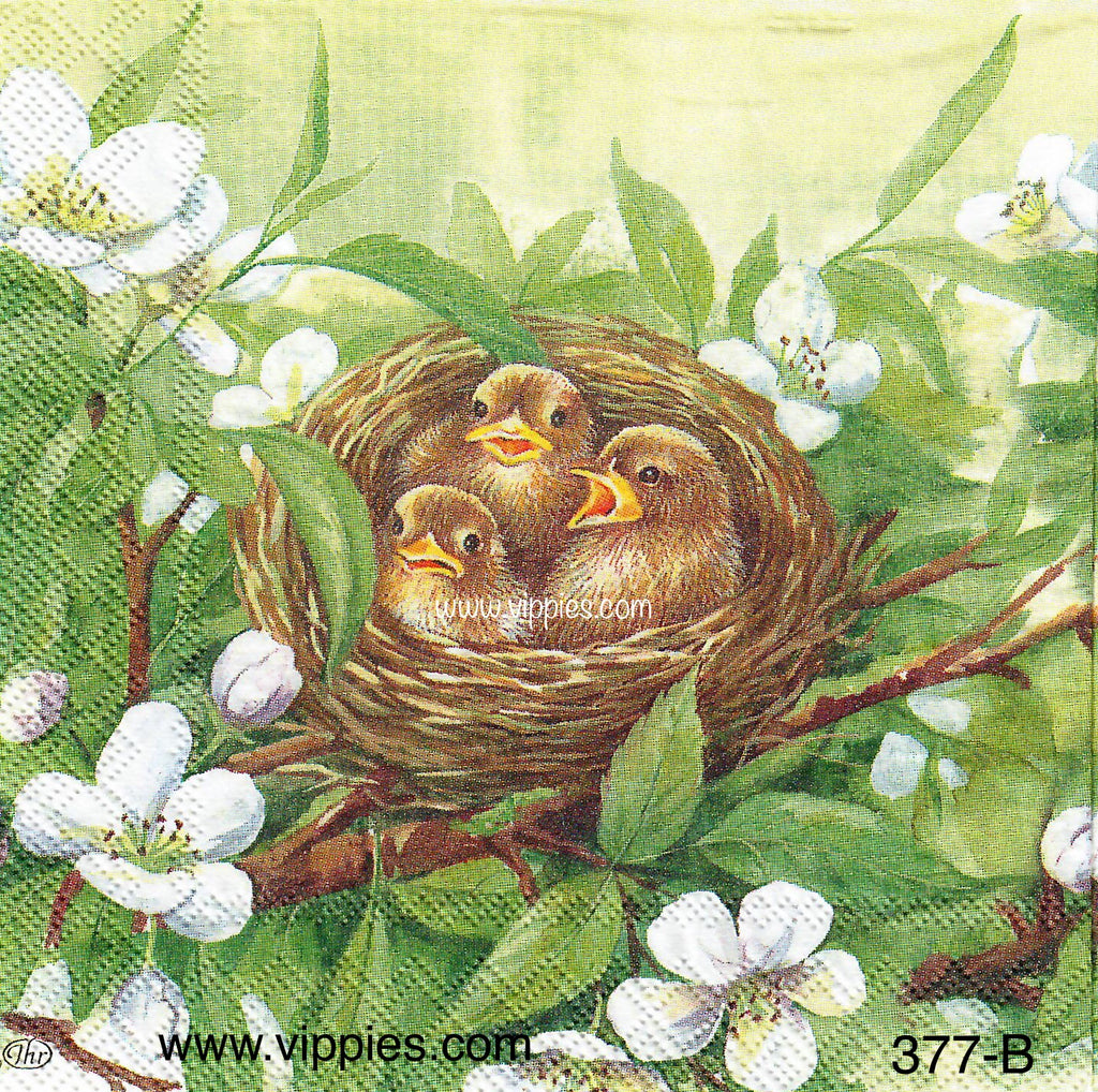 BB-377 Chicks Nesting Napkin for Decoupage