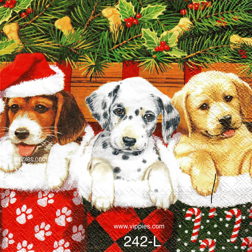 C-242 Puppies in Stockings Napkin for Decoupage