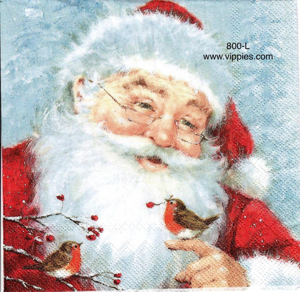 C-800 Santa with Tiny Robin Napkin for Decoupage
