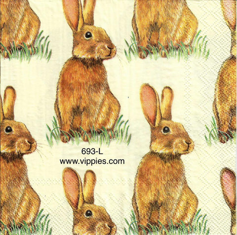 EAST-693 Brown Bunnies Grass Napkin for Decoupage