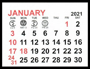 "Large 2021 Self-Stick Calendar Pads  3"" x 2-1/4"""