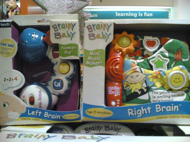 Brainy Baby Left Brain Bundle