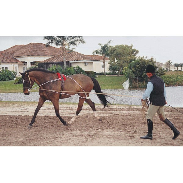 Pessoa® Lunging System