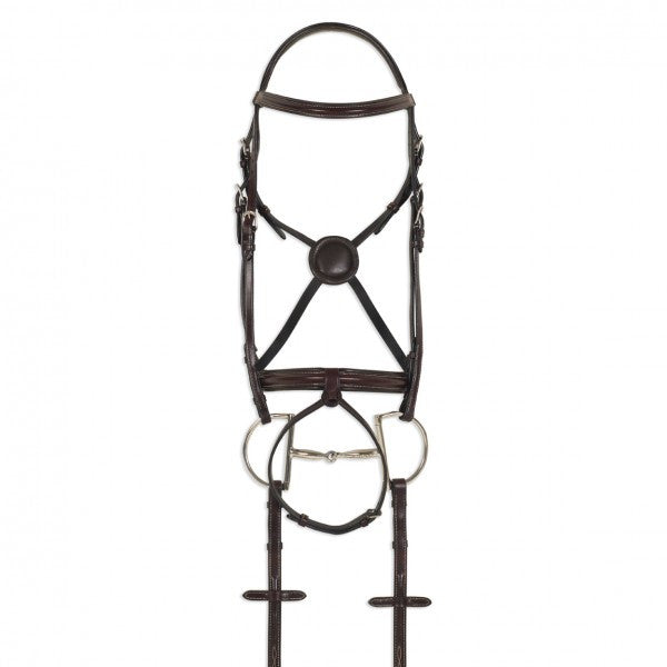 Equalizer Round Raised Bridle with Flash