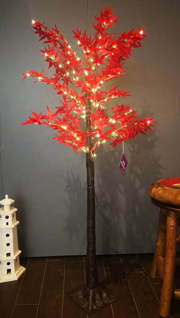Japanese Maple tree lights - IDEC Sense