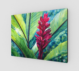 """Tropical Flame"" Fine Art Canvas Print, Hawaiian Torch Ginger art by artist © Christie Marie"