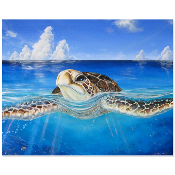 "Acrylic Print - ""Peace of the Tropics"" Hawaii Sea Turtle Art by Christie Marie E. Russell"