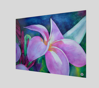 """Blooming"" Fine Art Poster Print, Plumeria / Frangipani Tropical Flower Art by artist © Christie Marie"