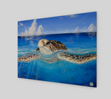 """Peace of the Tropics"" Fine Art Wood Print, Tropical Sea Turtle Art by Artist © Christie Marie"