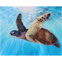 "Aloha Spirit - Fine Archival ""Giclee"" Art Prints - Hawaiian Sea Turtle swimming in clear blue ocean waters"