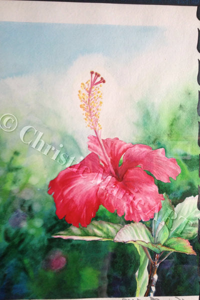 Hawaiian Hibiscus Art Framed Original Fine Art Tropical Hawaii Red Flower Framed Watercolor Painting by artist Christie Marie E Russell ©