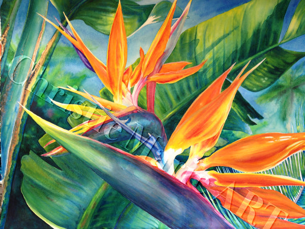 ORIGINAL Large Framed Hawaiian Bird of Paradise Watercolor Art Painting Tropical Flowers Hawaiian Art by Artist Christie Marie E. Russell ©
