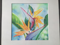 ORIGINAL ART Tropical Flower Bird of Paradise Watercolor Painting Hawaiian Island, Framed by artist Christie Marie E Russell ©